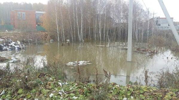 Фекалии хлынули к  Шершневскому водохранилищу