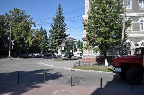 «Реальные дела» в Челябинске – это вырубка деревьев в центре города