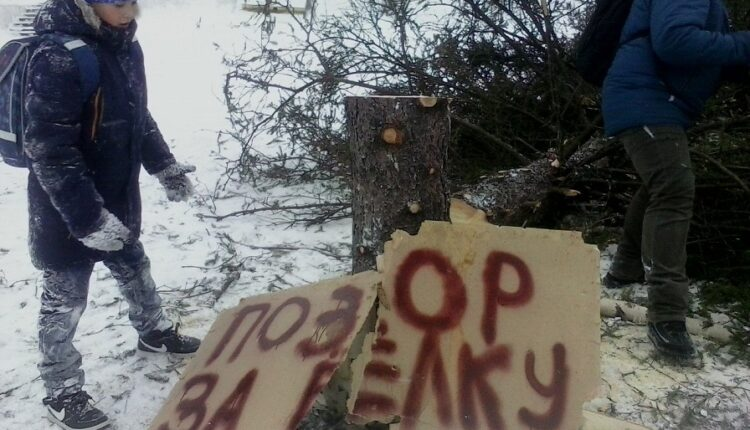 Хоровод вокруг пенька: Как на Южном Урале  готовятся к Новому году