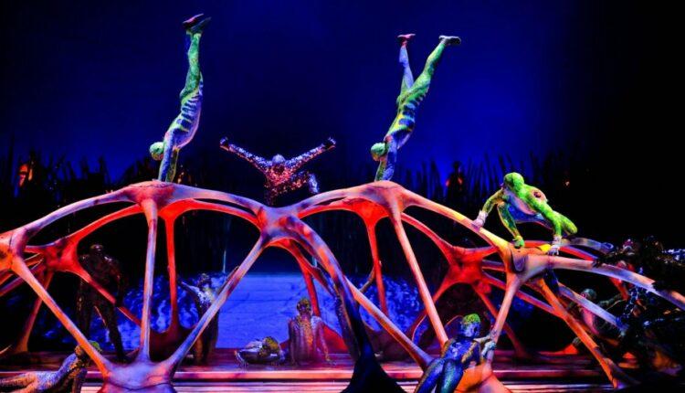 В борьбе против «коварного Запада» Минкульт ударит по цирковому зрителю