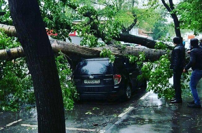 На Москву обрушился ураган. Есть жертвы. ФОТО, ВИДЕО