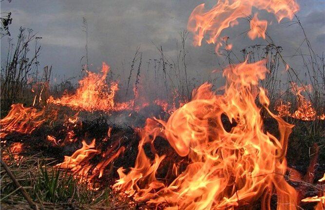 Командир пожарной части погиб, туша пожар в районе ММК
