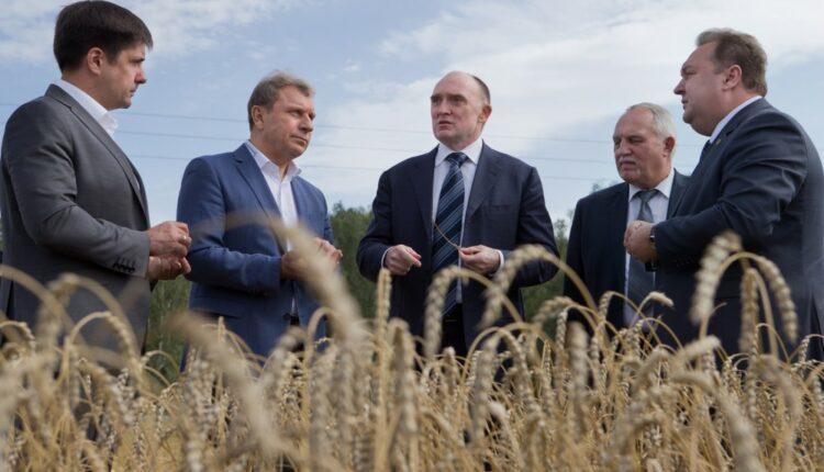 На Южном Урале продают некачественное зерно