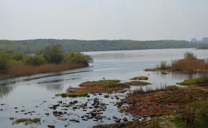 Экологическое ЧП в Челябинске: каскад прудов загажен канализационными стоками