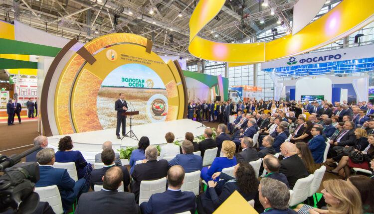 Дмитрий Медведев проигнорировал южноуральского губернатора Дубровского