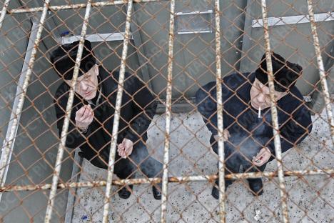 Депутатское милосердие: послабления для особо опасных преступников одобрены Госдумой