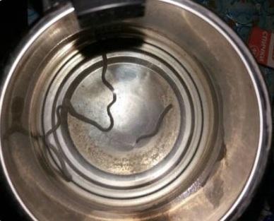 Из-под крана жителей Челябинска потекла вода с червями-паразитами