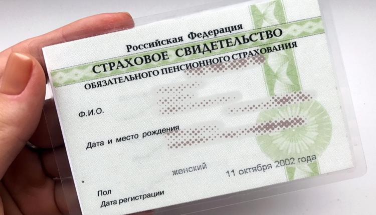 В России больше не будут выдавать бумажный СНИЛС
