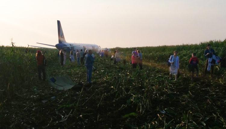 «Спасибо, что живы». Пассажирский самолет жестко приземлился на кукурузное поле в Подмосковье. ВИДЕО