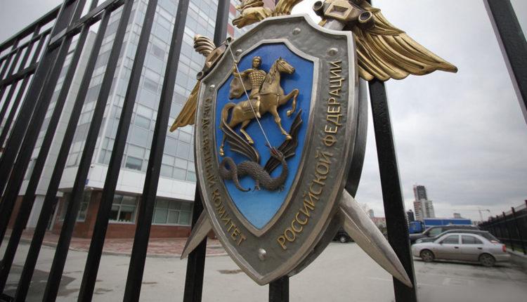 Делом о нападении на главу ЦИК Памфилову займется центральный аппарат Следственного комитета