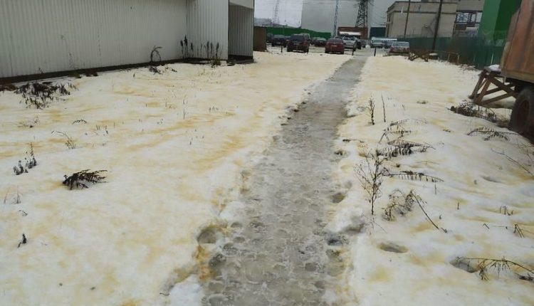 Экологическая катастрофа в Карелии: на улицах одного из городов выпал желтый снег и массово гибнут птицы. Власти считают, что все в порядке. ФОТО