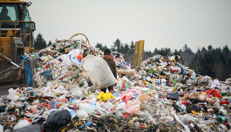 Племянник главы ФСБ решил проблемы скандального мусорного полигона и сократил свою долю в нем