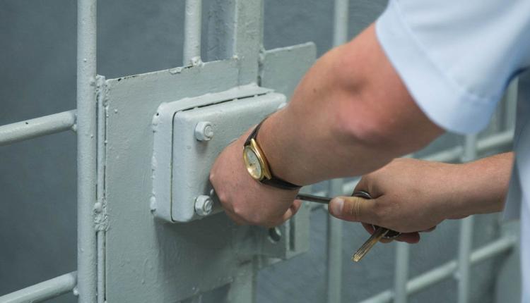 Госдума не намерена амнистировать заключенных в честь 75-летия Победы