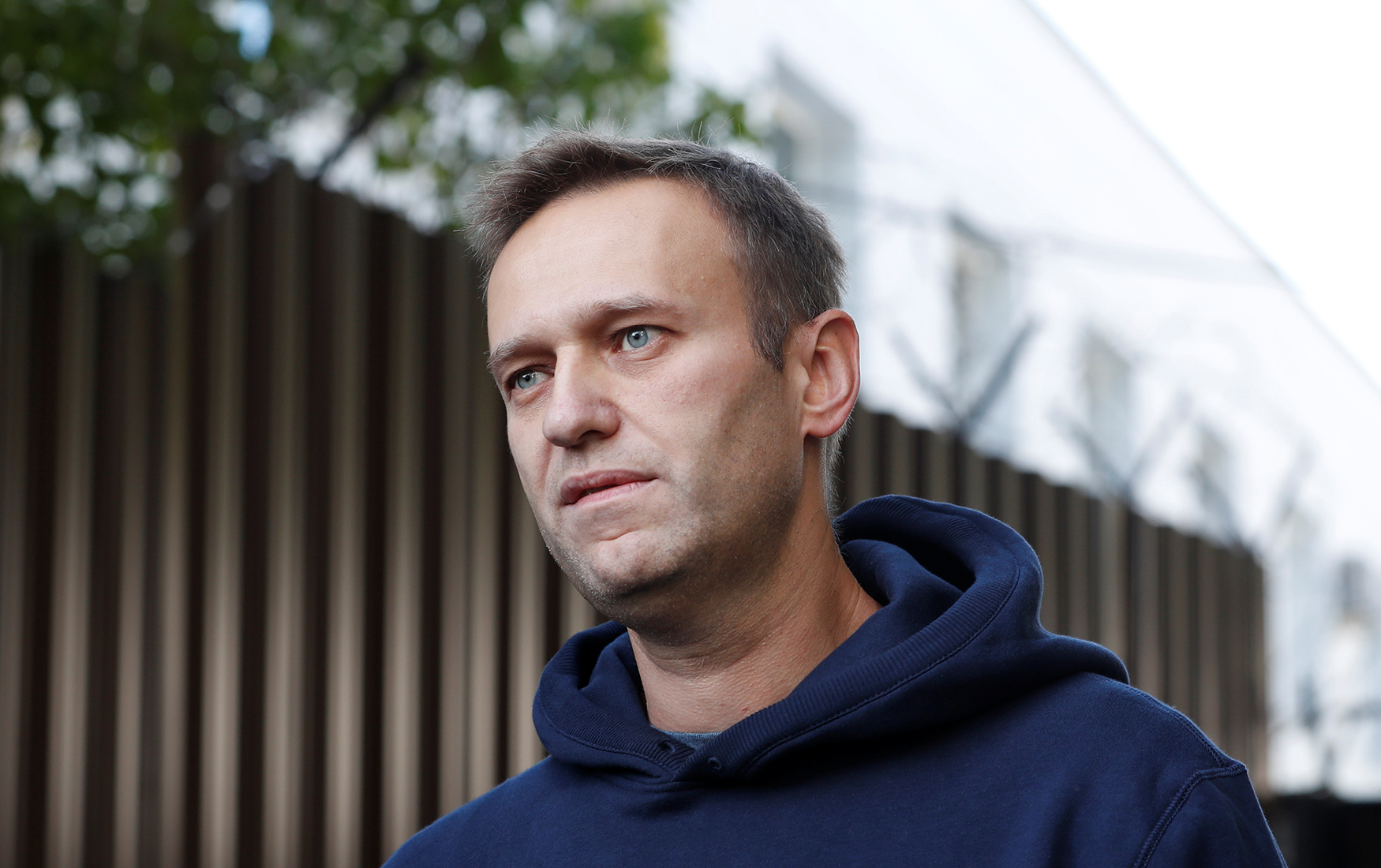 """""""Какие же они идиоты!"""": Над Навальным и Ко вовсю потешаются из-за нового """"расследования"""""""