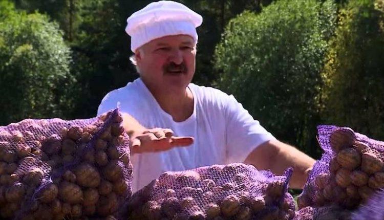 Лукашенко вознаградил картошкой со своего огорода сотрудников ОМОН за работу на акциях протеста