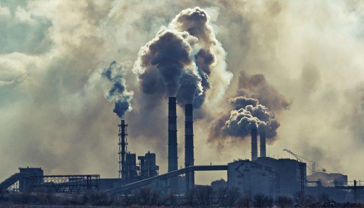Более половины россиян считают, что экологическая ситуация в стране ухудшилась
